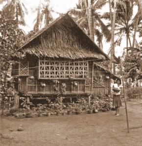 bahay_kubo_reduced-1